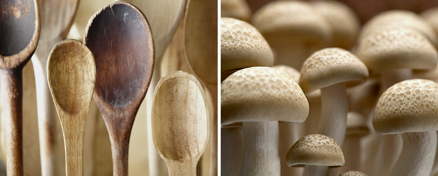 Wooden Spoons Mushrooms Christopher Nastri